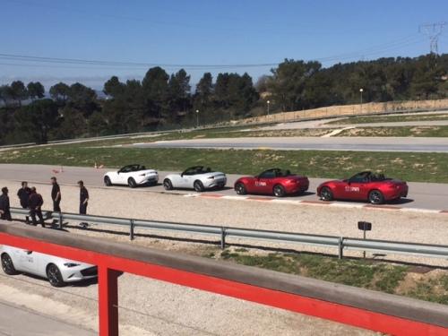 15_Autocross